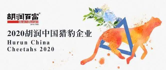 《2020胡润中国猎豹企业》